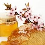 Вытачиваем осиную талию медом