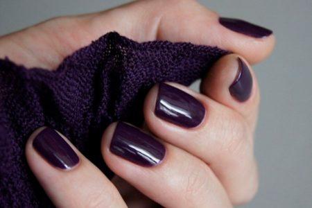ногти цвета баклажан